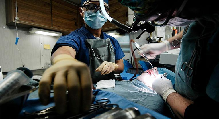 врач стоматолог за работой