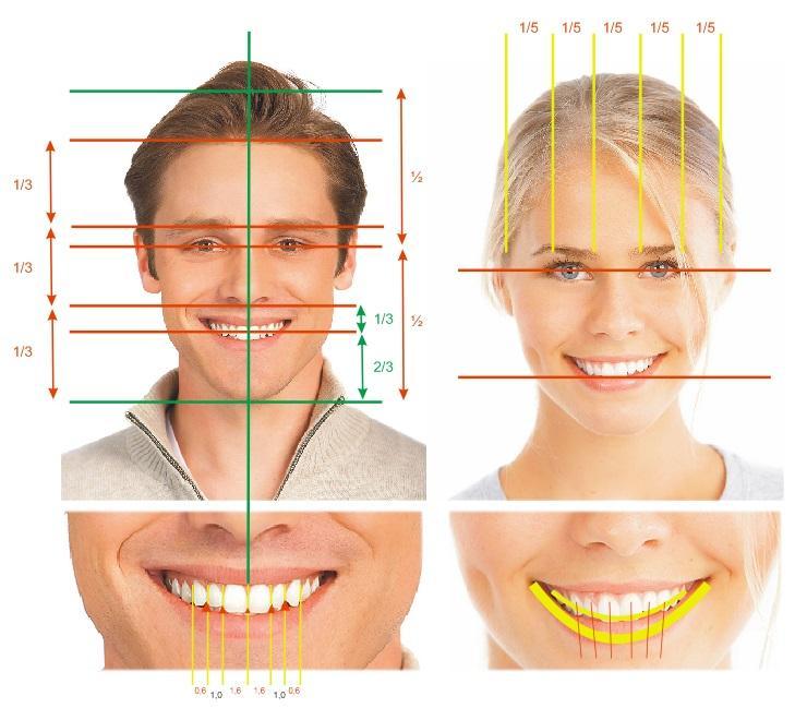Анализ формы зубов и межрезцовых линий в ортопедической стоматологии
