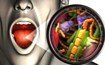 Распространение микроорганизмов